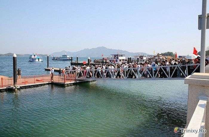 Туристи проігнорували попередження на мосту (9 фото + відео)