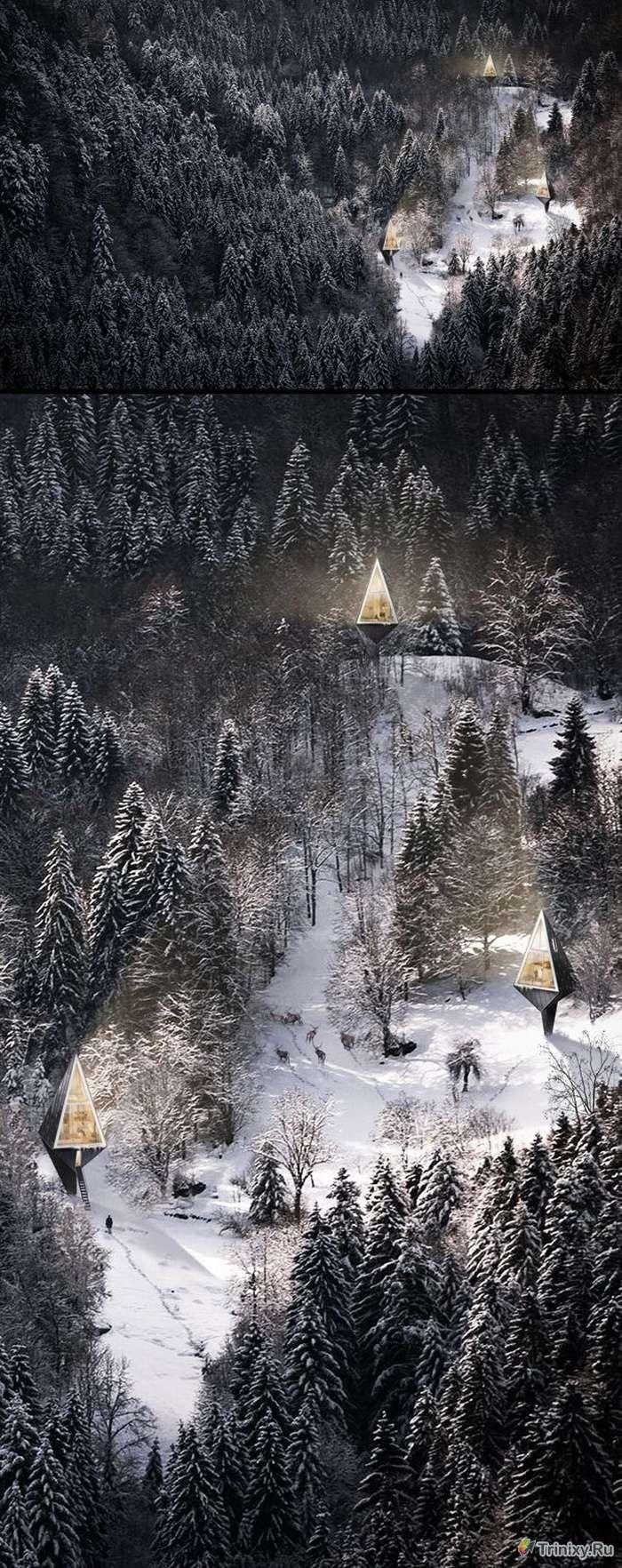 Первісне житло - екологічні будинки в лісі (6 фото)