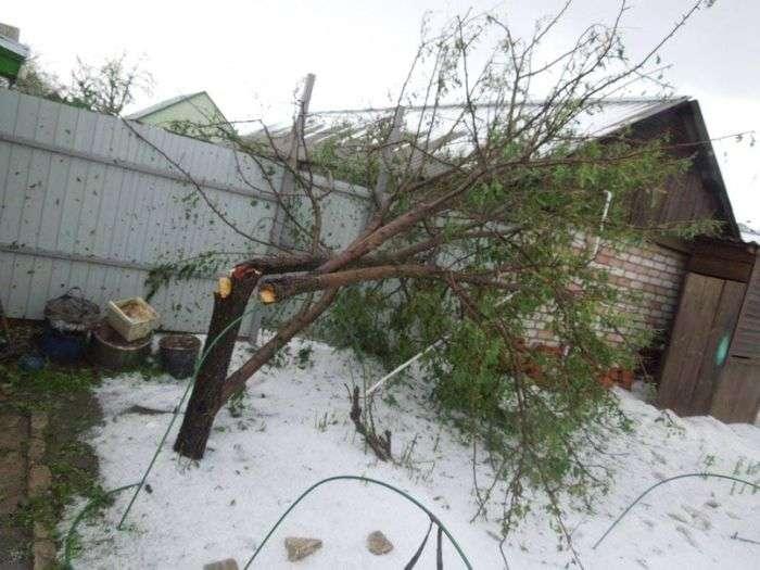 Сильний град в Погарі знищив посіви і пошкодив будинки (31 фото + відео)