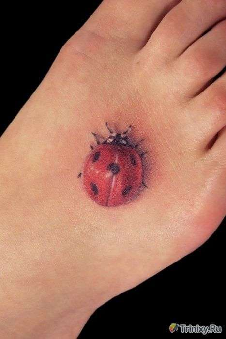 Неймовірно реалістичні татуювання (31 фото)