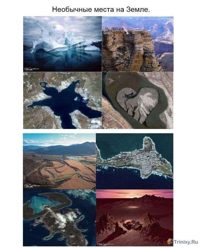 Дивовижна сила природи (14 фото)