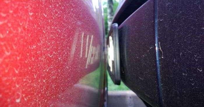 Майстерня парковка на Smart (2 фото)